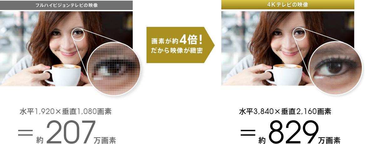 """""""http://www.sony.jp/"""""""