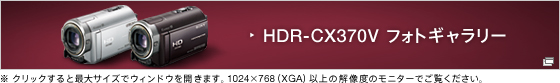 HDR-CX370V �t�H�g�M�������[