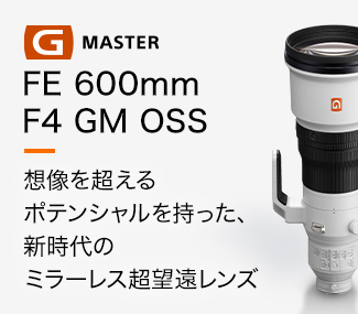 FE 600mm F4 GM Coming soon...