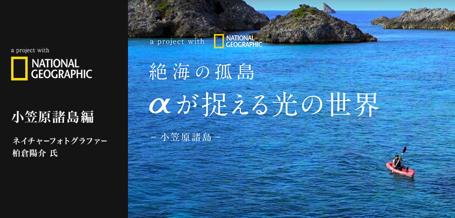 「a project with NATIONAL GEOGRAPHIC 小笠原諸島編 vol.1/3」絶海の孤島 aが捉える光の世界 -小笠原諸島-