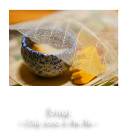 Snap 〜 Only once in the life 〜