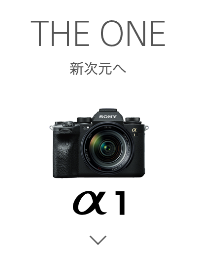THE ONE 新次元へ α1