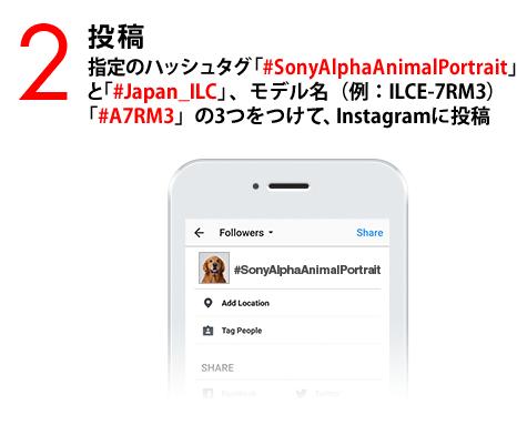 2:投稿 指定のハッシュタグ「#SonyAlphaAnimalPortrait」と「#Japan_ILC」、モデル名(例:ILCE-7RM3)「#A7RM3」の3つをつけて、Instagramに投稿