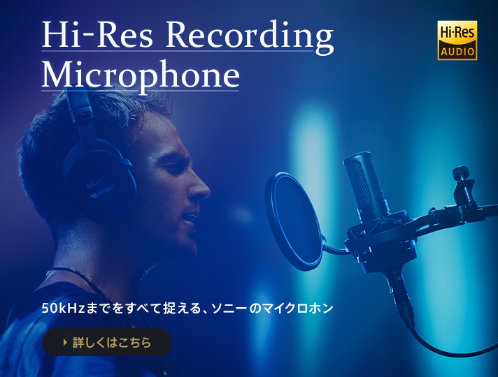 Hi-Res Recording Microphone