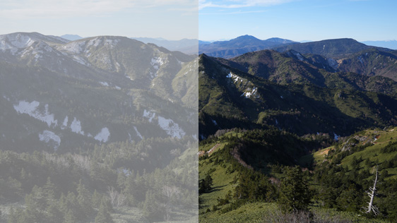 左:S-Gamut3.Cine/S-Log3 右:カラーグレーディングされた映像