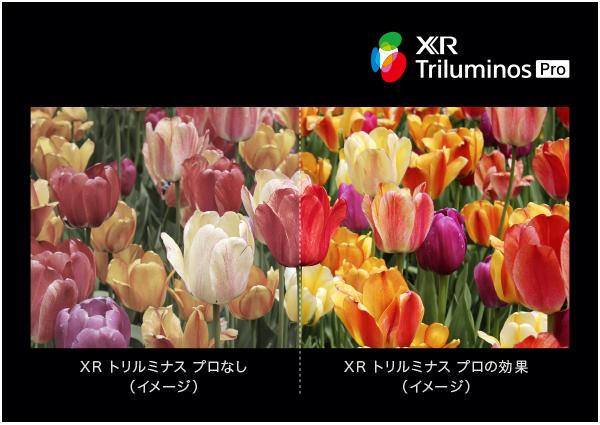 XR トリルミナス プロの効果イメージ画像を修正しました 2021年6月7日