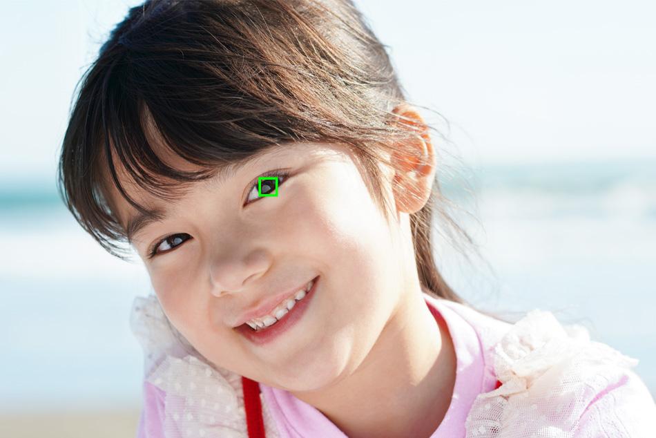 瞳AFの説明画像