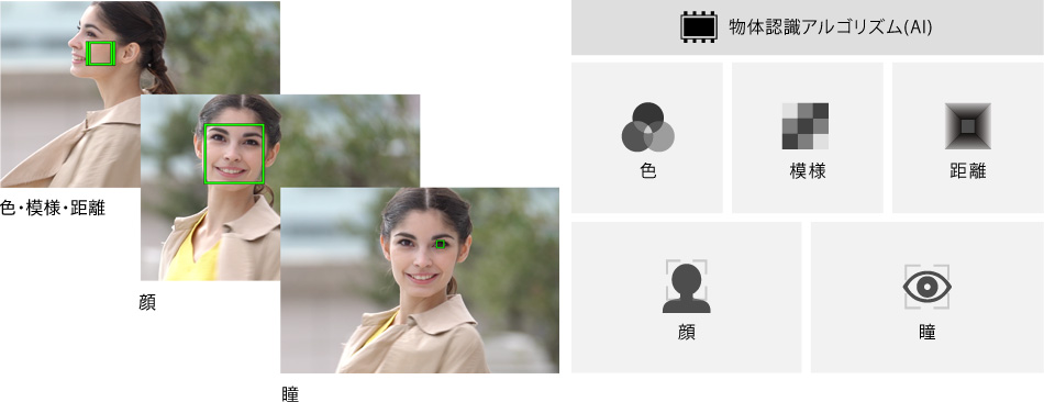 https://www.sony.jp/products/picture/y_ILCE-7C_RealTimeTracking.jpg