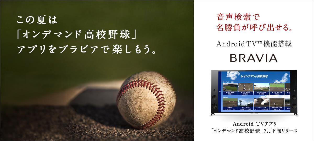 液晶テレビ ブラビア®