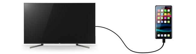 スマホ の 画面 を テレビ で 見る 方法