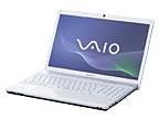 VAIO Eシリーズ VPCEA45FJ